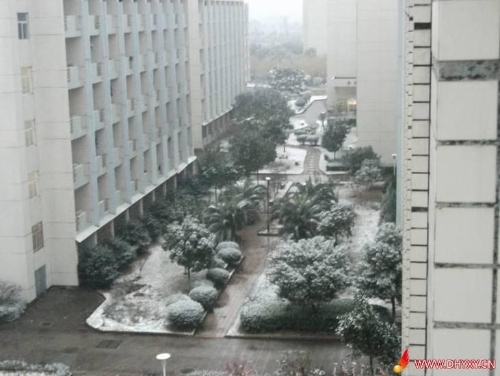 2010年冬季大红鹰学院雪景 靓图相册 大红鹰校友网 宁波大红鹰学院论